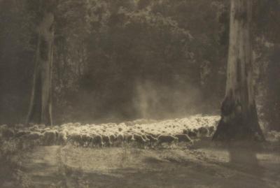 John Eaton; Bush Pastures; 1923; 1925/2/7