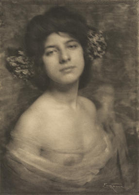 Frank Smith; Hortensia; Circa 1920; 1925/2/28