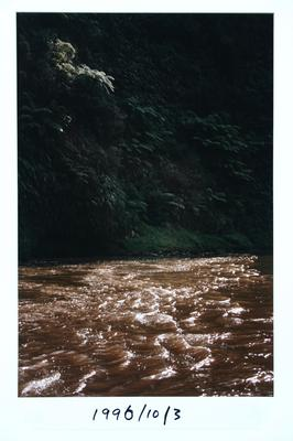 Bruce Foster; Whanganui River; 1985; 1996/10/3