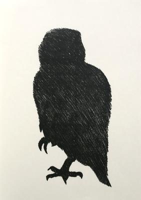 Whekau (Laughing Owl)