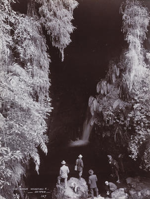 The Caves, Whanganui River (107)