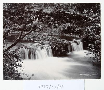 Normanby Cascade (295)