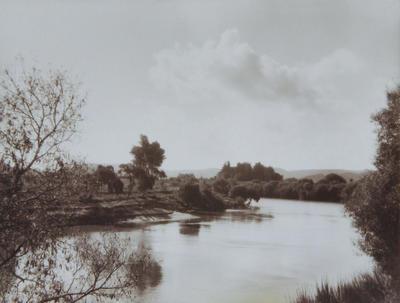 Untitled (Wanganui River)