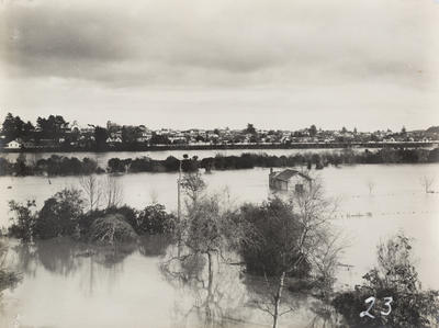 Untitled (flood scene from Anzac Parade)
