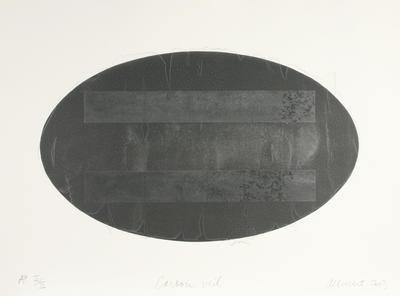 Gretchen Albrecht; Carbon Veil; 2003; 2004/6/6
