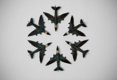 Kingfisher squadron