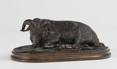 Resting Ram (Bélier Couché)