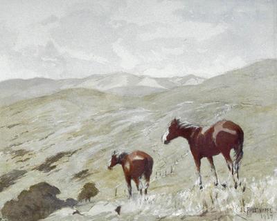 Joseph Palethorpe; On the Wellington Hills; 1927; 1928/1/2