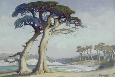 Katherine Vane; Evening, Monterey Cypress, California. 1926; 1926; 1930/4/1