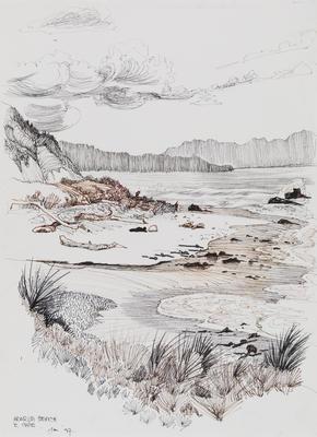 Untitled (Araroa Beach)