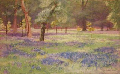 John Charles Dollman; Bluebells at Kew; Unknown; 1936/3/1