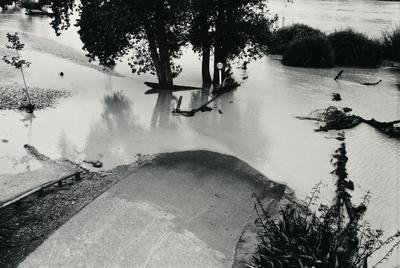 Flooded parkland, Wanganui