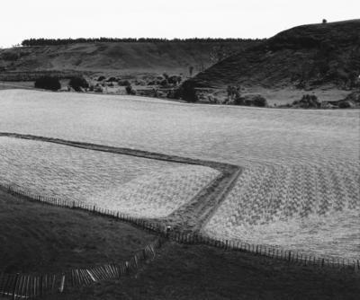 Wayne Barrar; Track in Field, Kai Iwi, 1985; 1985; 1987/2/2