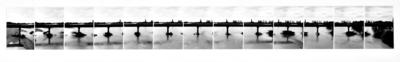 Wairau rail bridge (13 viewpoints)
