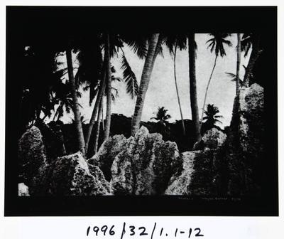 Wayne Barrar; Nauru:1; Circa 1992; 1996/32/1.1