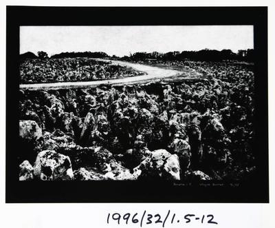 Wayne Barrar; Nauru:5; Circa 1992; 1996/32/1.5