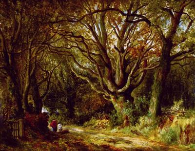 John Steeple; Untitled (A Country Lane); 1860-1887; 1952/1/1