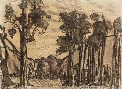 Native Trees, Ngutuwera