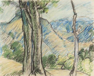 Trees & Hills