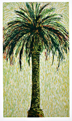 Sue Cooke; Phoenix Palm; 1993; 1994/13/2