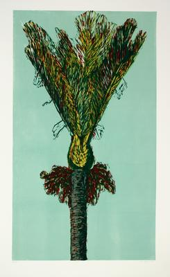 Sue Cooke; Nikau; 1993; 1994/13/3