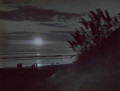 It's all Moonshine (Scene at Kai Iwi Beach)