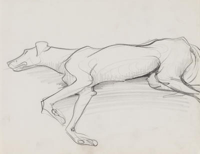 Untitled (Lying dog)