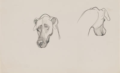 Untitled (Head of a dog)