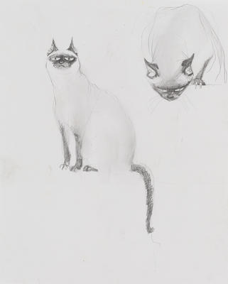 Untitled (Siamese cats)