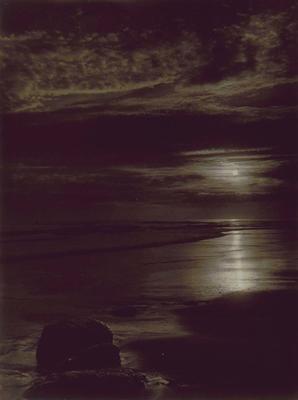 Premonition (Kai Iwi Beach)