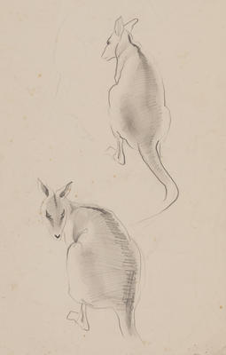 Untitled (Kangaroos)