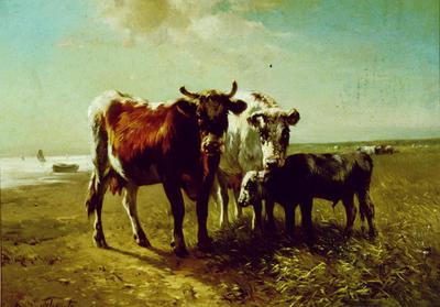 Cattle on a Beach