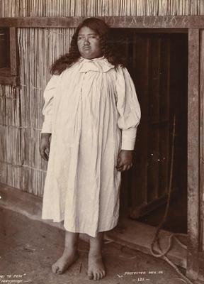 W H T Partington; Pei Te Pehi; 1902; 1994/12/42