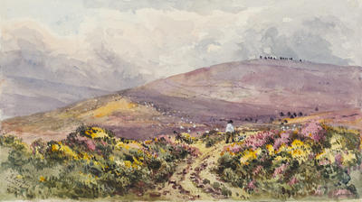 Ethel Birch; Countisbury Common, North Devon; Circa 1870s; 1922/2/4