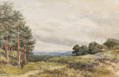 Ethel Birch; Near Lyndhurst, New Forest; Circa 1870s; 1922/2/21