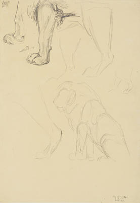 Vivian Smith; Untitled (Lion); 19 Aug 1914; 1988/27/470