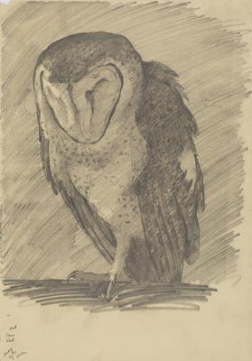 Vivian Smith; Untitled (Owl); May 1915; 1988/27/475
