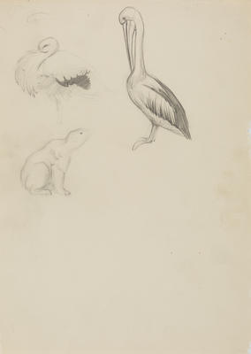 Untitled (Bear, pelican and stork)