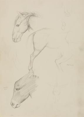 Vivian Smith; Untitled (Horse and donkey); 1913-1917?; 1988/27/486