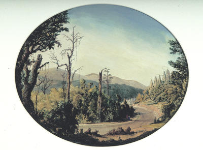 George O'Brien; Leith Valley, Dunedin; Circa 1870; 1977/19/1