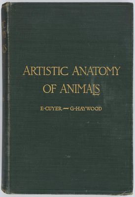 [Book, Artistic Anatomy of Animals]
