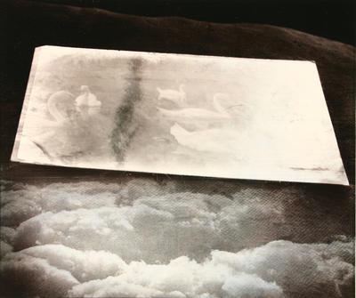 Untitled (Cloud & Swan image)