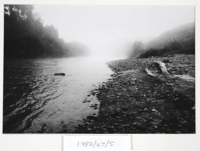 Koiro, Wanganui River. 1982