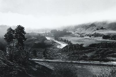 From Piriaka, Upper Reaches, 1981