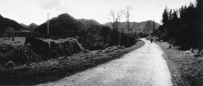 The Long Acre, Wanganui River Road, 1982