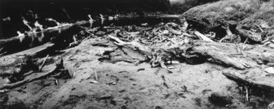 Log Beds, Parinui, 1982