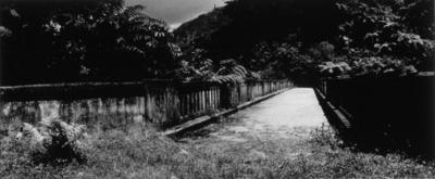 The Bridge to Nowhere, Mangapurua 1982