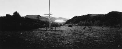 Hau Hau War Pole, Rongo Niu, Maraekōwhai