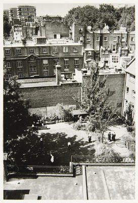Looking towards north London from the roof of Tyburn across the enclosure garden.