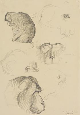 Untitled (Monkey)